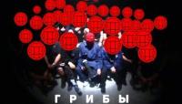 Копы - клип группы Грибы