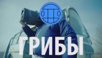 Тает Лёд - клип группы 591|Грибы (Grebz)